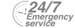 24/7 Emergency Service Pest Control in Gravesend, Northfleet, DA11. Call Now! 020 8166 9746